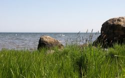 2009-wallpaper-havet-gras-01-1680x1050